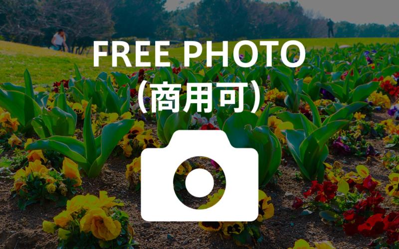 湘南・藤沢辻堂海浜公園 / 写真フリー素材(商用可)